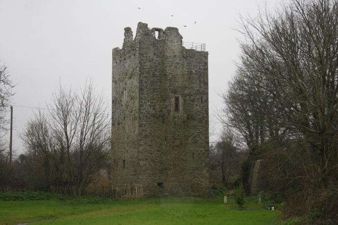 Ballintotis Castle (Jenny O'Brien)