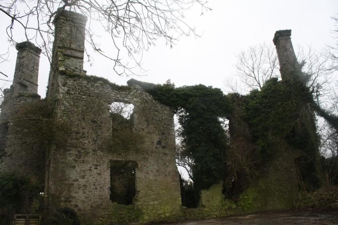 Ballyannan Castle (Jenny O'Brien)