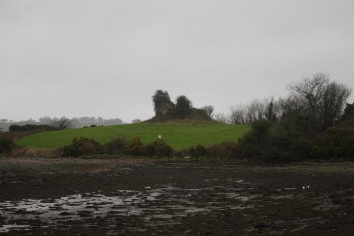 Ballyvodock West Castle (Jenny O'Brien)